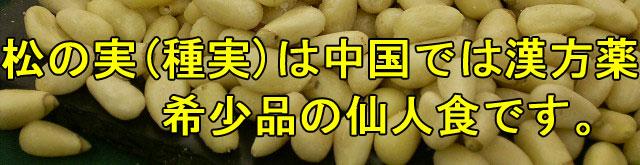 松の実は(種実)は中国では漢方薬/希少品の千人食