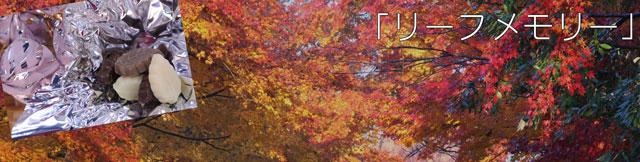 リーフメモリー木の葉チョコ