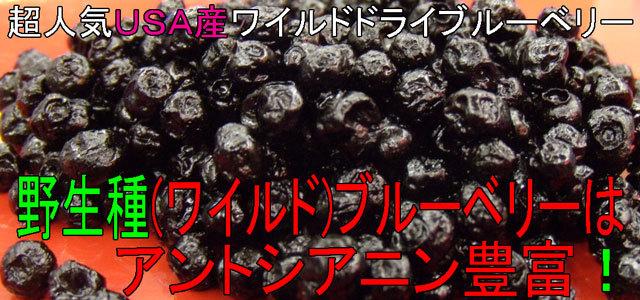ワイルドブルーベリーはアントシアニン豊富!