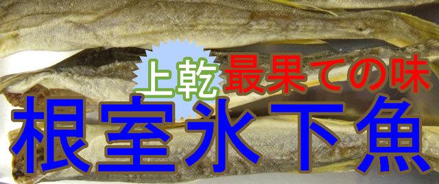 おつまみこまい(氷下魚)/かんかい