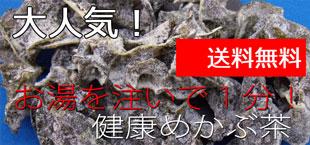 目の元気にワイルドブルーベリー/送料無料
