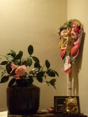 コーヒーキャットの季節のお花のディスプレー