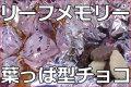 リーフメモリー/木の葉チョコレート